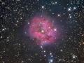 IC1546